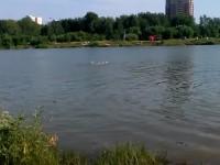 Акватория озера